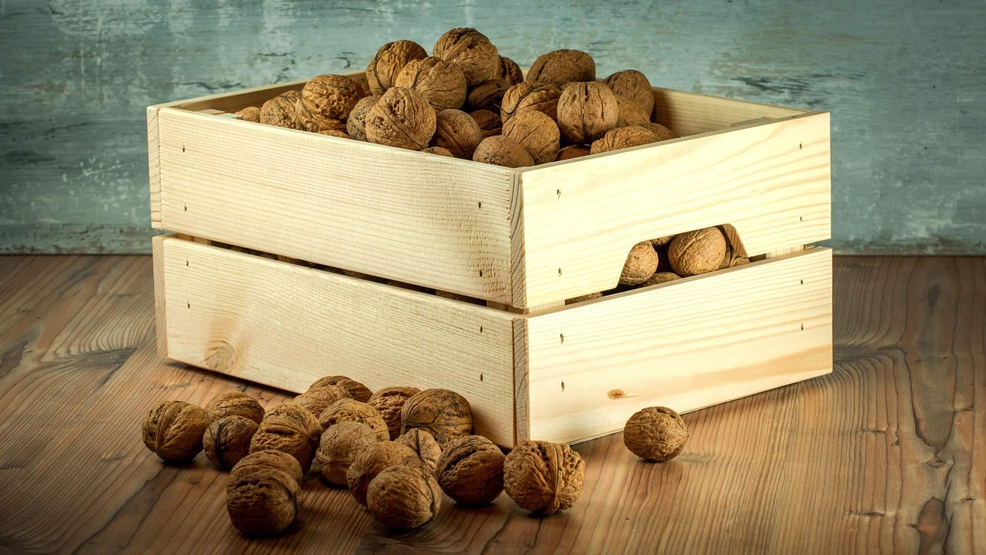 Nuts help to suppress the feeling of hunger