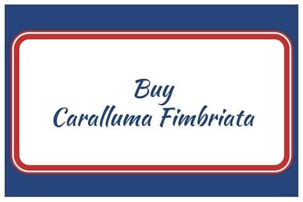 Buy Caralluma Fimbriata