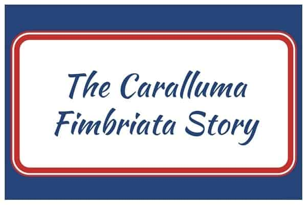 The Caralluma Fimbriata Story